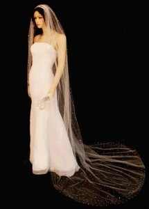 White Rhinestone Covered Stardust Cathedral Length Wedding Veil