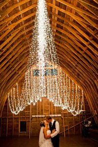 1000 Romantic Reception Lights