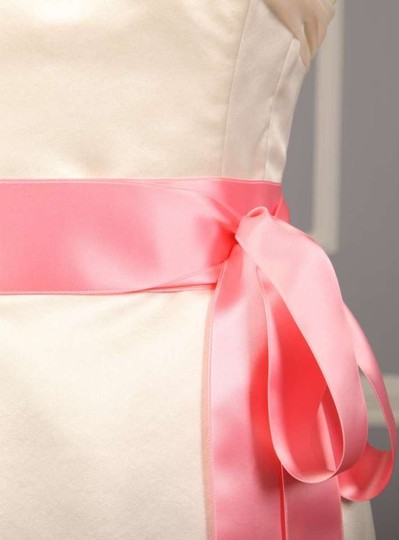 Pink Delight Ribbon Sash