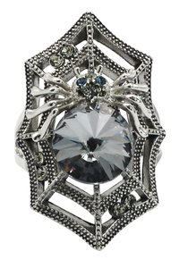 Ocean Fashion Special spider crystal silver ring