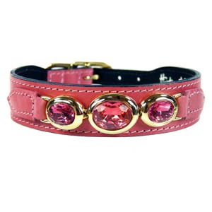 Hartman & Rose Luxury Italian Dog Collar 22k Gold w/ Rose Swarovski 8-10