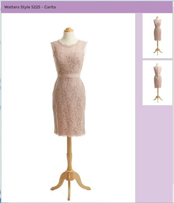 Item - Pink / Blush Lace The Carita Excellent Condition - **free Shipping Formal Bridesmaid/Mob Dress Size 8 (M)