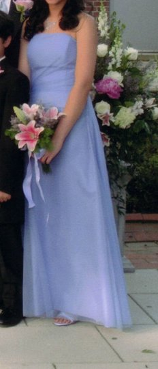 Vera Wang Bluebell Style 15m16 Dolores Extra Length Dress