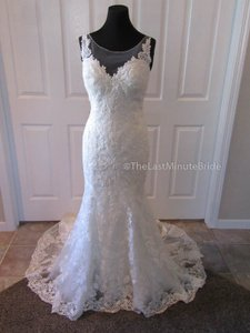 Sottero and Midgley Ivory Lace Silvia 6sc247 Feminine Wedding Dress Size 10 (M)