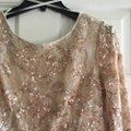 BHLDN Champagne Pink Viola In Blush Formal Wedding Dress Size 10 (M) Image 5