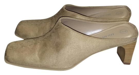 Highlights Camel Mules
