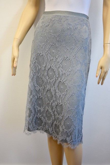 Preload https://img-static.tradesy.com/item/20886224/lil-silver-french-designer-blend-lace-knee-length-skirt-size-8-m-29-30-0-0-650-650.jpg