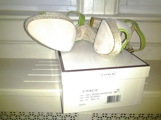Coach beige and green Sandals