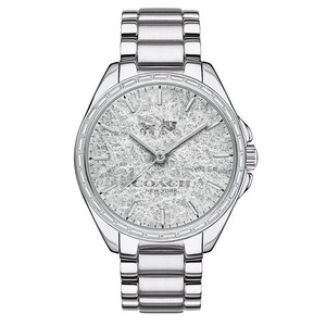 Coach Coach Tristen 14502457 Sterling Silver Foil Dial Stainless Watch