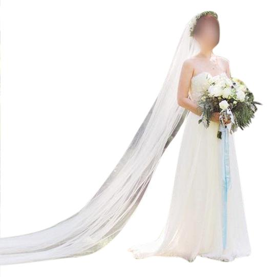 Ivory Long Cathedral with Soutache Trim Bridal Veil