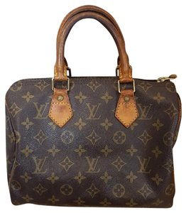 Louis Vuitton Speedy Lv Speedy 25 Speedy Satchel in Monogram