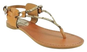 Other Sexy Stunning Coach Thong Python Comfortable New Box Neutral Ginger Flipflops Flats Natural/ginger Sandals