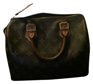 Louis Vuitton Speedy Canvas Satchel