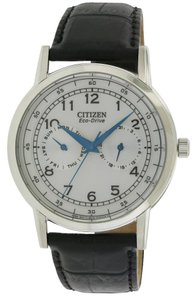 Citizen Citizen Eco-Drive Leather Mens Watch AO9000-06B