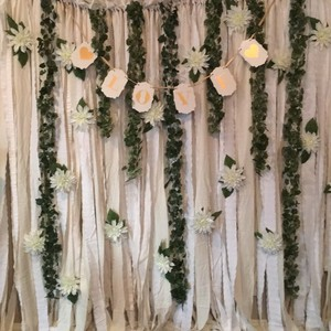 Bridal Shower/wedding Photo Backdrop