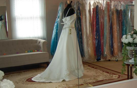 Andy Anand Couture Ivory Satin Elegant A-line Wedding Dress Size 16 (XL, Plus 0x) Image 1