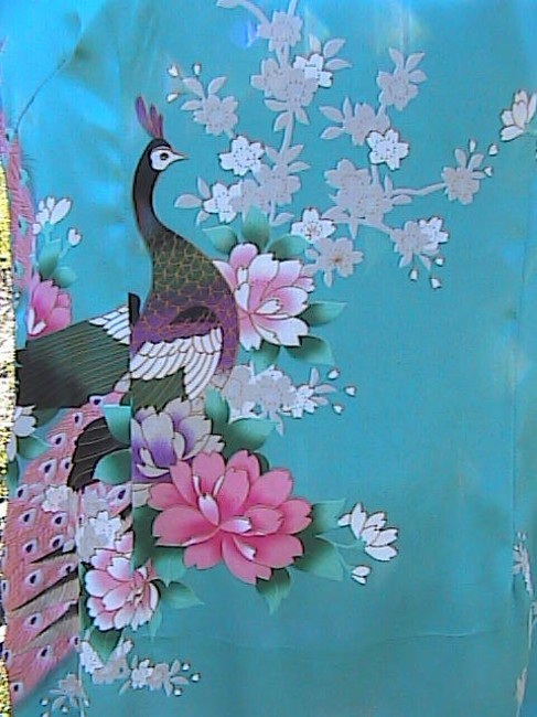 Fu Shi short dress Peacock Chinese on Tradesy