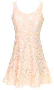 Alex + Alex short dress Sleeveless Lace on Tradesy