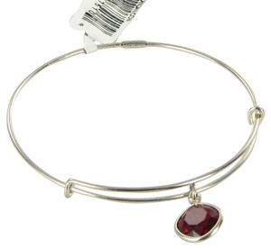 Alex and Ani Color Therapy Endurance Red Expandable Bracelet Russian Silver