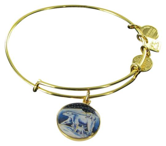 Preload https://img-static.tradesy.com/item/21027796/alex-and-ani-cbd15pbyg-polar-bears-assoc-zoos-and-aquariums-expandable-ewb-bracelet-0-1-540-540.jpg