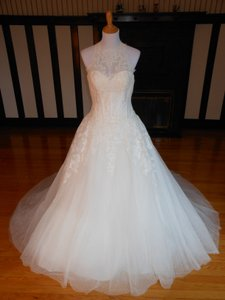 Pronovias Off White Lace Gitel Destination Wedding Dress Size 12 (L)