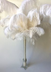 Ostrich White Feather 22 - 24 Inch 10 Pieces