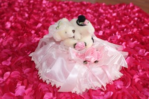 Cute Flower Girl Basket+ring Bearer Pillow+wine Covers