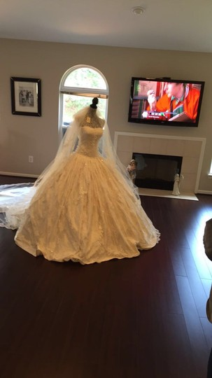 Ivory Chantilly Lace and Silk 1404 Traditional Wedding Dress Size 8 (M) Image 3