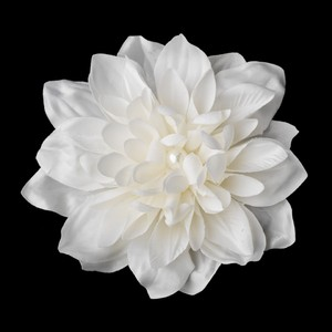 Elegance By Carbonneau Pearl Centered Bridal Hair Flower Clip Or Clip Brooch 402