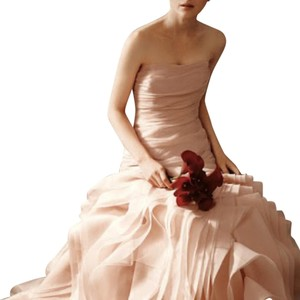Vera Wang Vera Wang Preserved Ivory Wedding Gown Wedding Dress