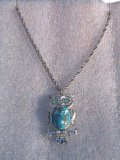 Unknown Southwestern Turquoise Silver Tone Owl Necklace