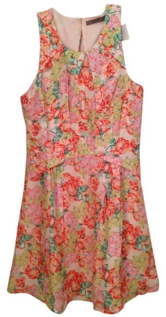 Preload https://item2.tradesy.com/images/aryn-k-floral-above-knee-short-casual-dress-size-10-m-2117731-0-0.jpg?width=400&height=650