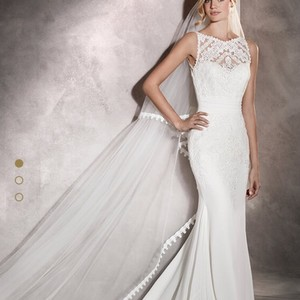 Pronovias Arlet Wedding Dress