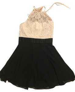 Max and Cleo Blackandwhite Lace Chiffon Satin Dress