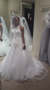 Ella Rosa Be269 Wedding Dress