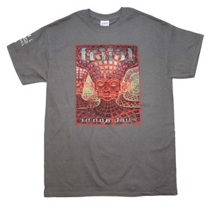 Tool Band Shirts Hippie Boho The Treasured Hippie T Shirt Gray