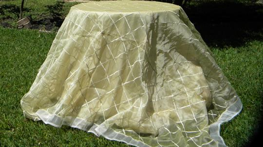 Cream Tablecloth Image 2