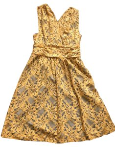 Anthropologie short dress Yellow Fit And Flare Lace Summer A-line on Tradesy