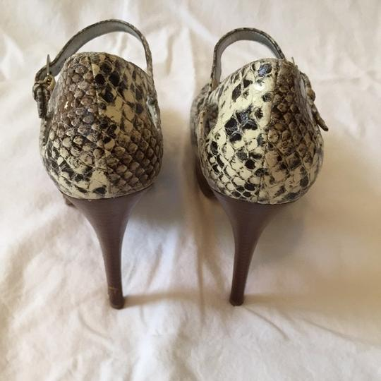 Guess Back And White Snake Print Pumps