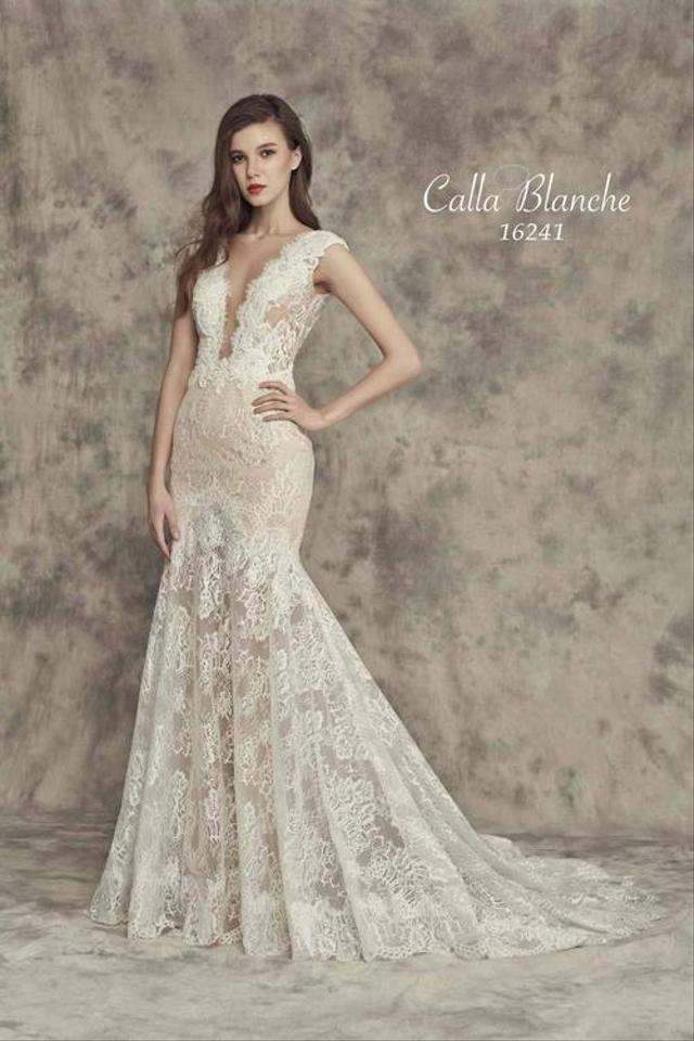 Ivory Light Nude Lace Beading Cap Sleeve V Back Illusion Front Fit N Flare Formal Wedding Dress Size 8 M 41 Off Retail