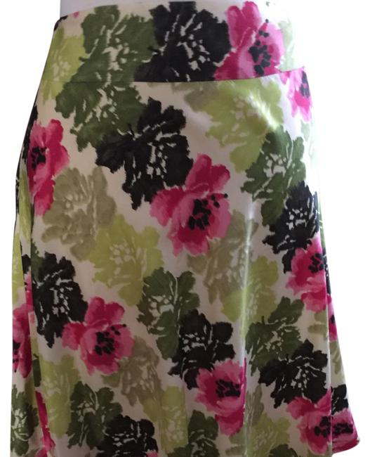 Preload https://img-static.tradesy.com/item/21332039/ann-taylor-shades-of-pinkgreen-flora-silk-crepe-faille-skirt-size-petite-10-m-0-1-650-650.jpg