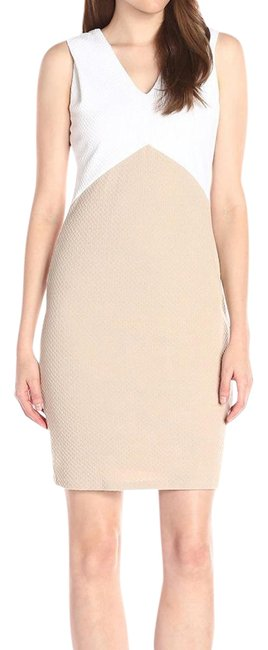 Preload https://img-static.tradesy.com/item/21338969/calvin-klein-beige-white-color-block-sheath-mid-length-workoffice-dress-size-14-l-0-1-650-650.jpg