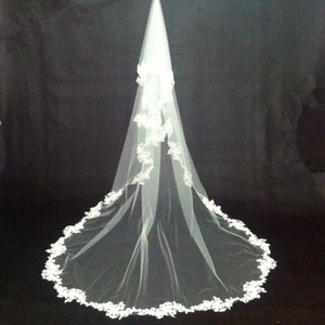One Layer Applique Lace Edge Bridal Veil Cathedral Legnth