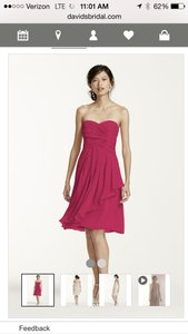 David's Bridal Begonia F14847 Dress