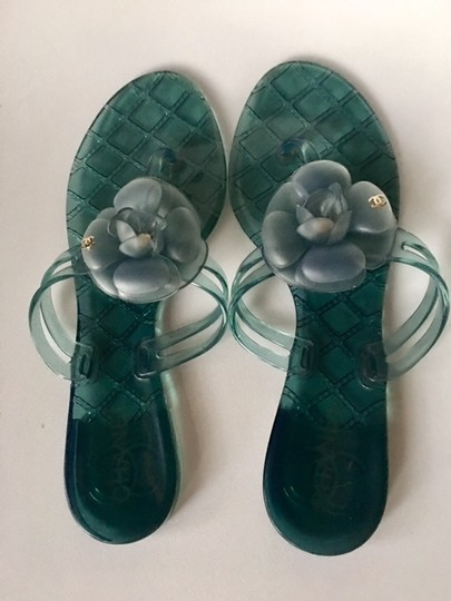 Chanel Slides Camellia Thong Jelly Flats Blue Sandals Image 10