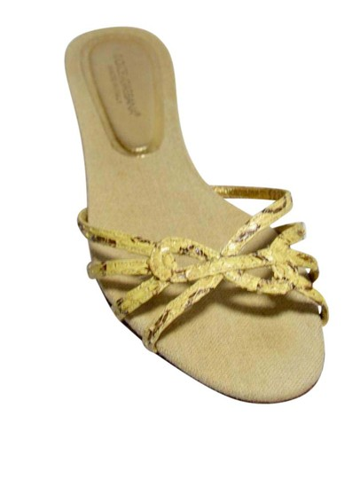 Preload https://img-static.tradesy.com/item/21540765/dolce-and-gabbana-beige-python-sandals-size-us-95-regular-m-b-0-1-540-540.jpg