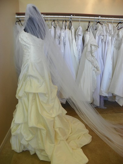 White Long Cathedral New Ready To Ship Bridal Veil
