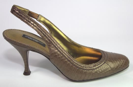 Preload https://img-static.tradesy.com/item/21555961/dolce-and-gabbana-brown-slingback-python-heels-pumps-size-us-7-regular-m-b-0-2-540-540.jpg