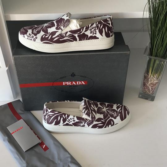 Prada white brown red Athletic
