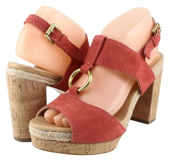 Preload https://img-static.tradesy.com/item/21569329/coach-tulip-valeann-suede-fashion-cork-platform-strappy-sandals-size-us-95-regular-m-b-0-1-540-540.jpg